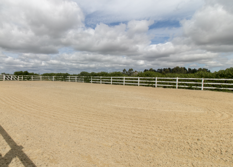 Equestrian Outdoor Arena